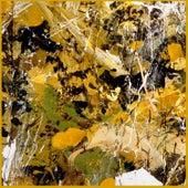 Cynefin (Julianna Barwick Rework) by Tiny Leaves
