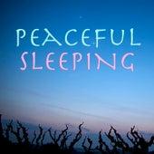 Peaceful Sleeping von Antonio Paravarno