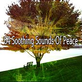 64 Soothing Sounds Of Peace von Lullabies for Deep Meditation