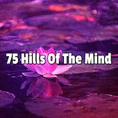 75 Hills Of The Mind de Nature Sounds Artists
