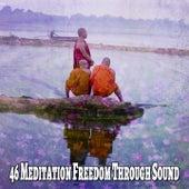 46 Meditation Freedom Through Sound de Meditación Música Ambiente