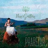 PraRezar by Niní Gallón