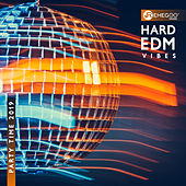 Hard EDM Vibes: Party Time 2019 von Various Artists