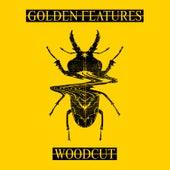 Woodcut (feat. Rromarin) (Remixes) by Golden Features