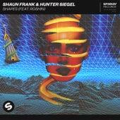 Shapes (feat. Roshin) by Shaun Frank