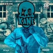 Hood by Kokane
