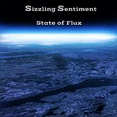 State of Flux by Sizzling Sentiment