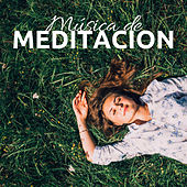 Música de Meditacion para Gente Ocupada CD de Meditar Rana