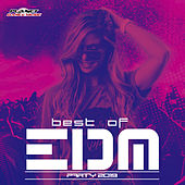 Best of EDM Party 2019 - EP von Various Artists