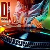 DJ Central Groove Vol, 13 von Various Artists