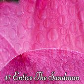 47 Entice The Sandman de White Noise Babies