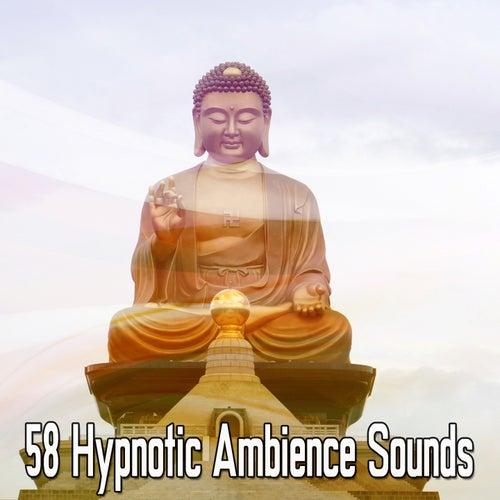 58 Hypnotic Ambience Sounds de Zen Meditate