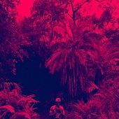 Palm Tree Paradise Falls von Various Artists