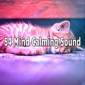 54 Mind Calming Sound by Soothing White Noise for Relaxation