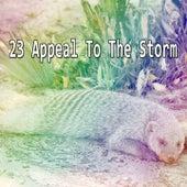 23 Appeal To The Storm de Thunderstorm Sleep