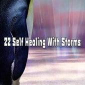 22 Self Healing With Storms de Thunderstorm Sleep