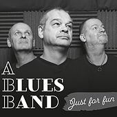 Just for Fun by The Blues Band