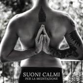 Suoni Calmi per la Meditazione (Suoni della Natura per il Relax, Allenamento Yoga, Pioggia Rilassante) de Meditazione zen musica