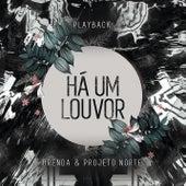 Há um Louvor (Let Praises Rise) (Playback) by Brenda