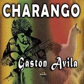 Charango de Gastón Avila