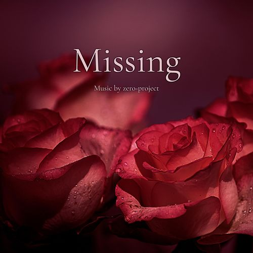 Missing by Zero-Project