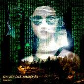 Psytrial matrix by Dj tomsten