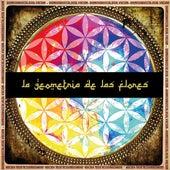 La Geometría de las Flores de Dionisio Busca La Salvación