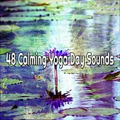 48 Calming Yoga Day Sounds by Classical Study Music (1)