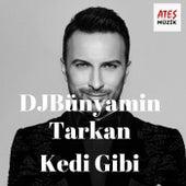 Kedi Gibi (Remix) von DJBünyamin