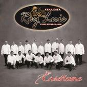 Enseñame by Orquesta Roy Luis