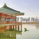 79 Sounds Of Tranquil Mind de Zen Meditation and Natural White Noise and New Age Deep Massage