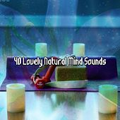 40 Lovely Natural Mind Sounds von Entspannungsmusik
