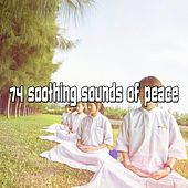 74 Soothing Sounds Of Peace von Massage Therapy Music