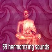 59 Harmonizing Sounds von Massage Therapy Music