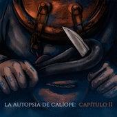 La Autopsia de Caliope, Vol. 2 de Maldito Fen