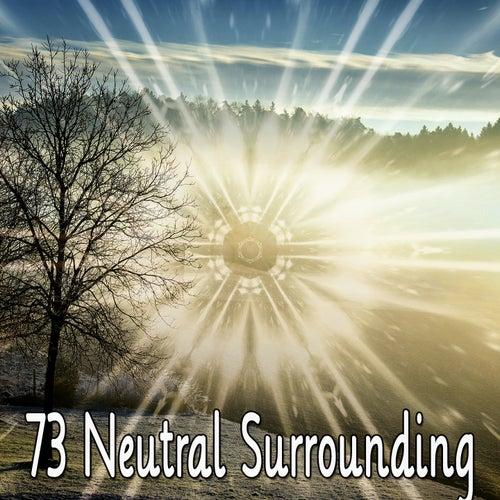 73 Neutral Surrounding de Musica Relajante