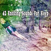 42 Enticing Sounds For Sleep de White Noise Babies