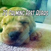 73 Calming Rest Auras de White Noise Babies