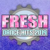Fresh Dance Hits 2019 by Various Artists