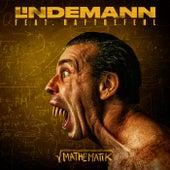 Mathematik von Lindemann