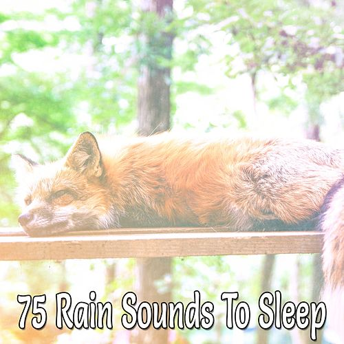 75 Rain Sounds To Sleep de Relajacion Del Mar