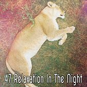 47 Relaxation In The Night de Water Sound Natural White Noise