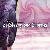 25 Sleepy Bed Storms de Thunderstorm Sleep