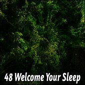 48 Welcome Your Sleep von Rockabye Lullaby