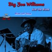 Just the Blues, 1958-1961, (24 Successes) (Blues Left Texas) de Big Joe Williams