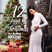 12 Days of Christmas de DJ Suede The Remix God