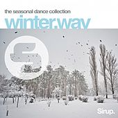 Winter.Wav von Various Artists