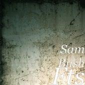 Fts by Sam Bush