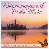 Entspannungsmusik für den Herbst, gefühlvolle Instrumentalmusik by Wellness Pur