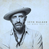 No More Will I by Seth Walker